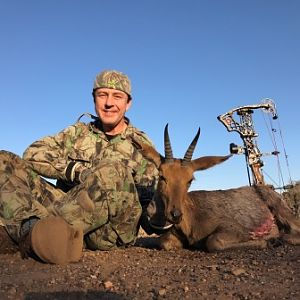 South Africa Bow Hunting Mountain Reedbuck