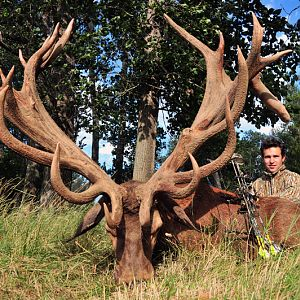 Red Stag Hunt in France