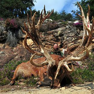 Hunting Red Stag France
