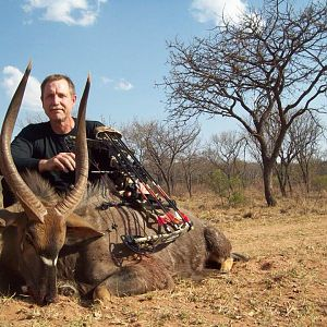 Nyala Bow Hunt in South Africa