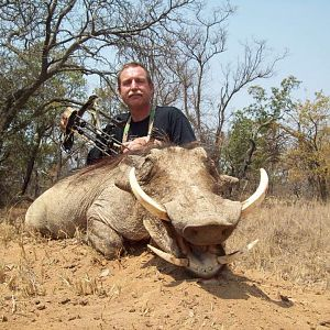 South Africa Bow Hunt Warthog