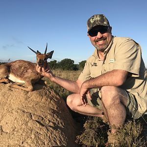Steenbok Hunting South Africa 3S Safaris