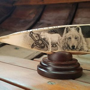 Scrimshaw Art of a Wolf