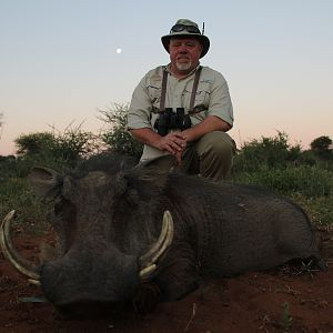 Warthog Hunting South Africa