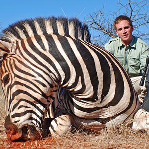 Hunting Burchell's Plain Zebra