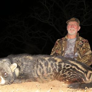 South Africa Hunting African Civet