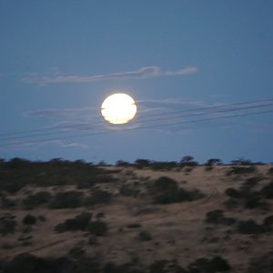 Full Moon South Africa