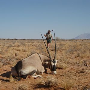 Gemsbok Hunt Namibia