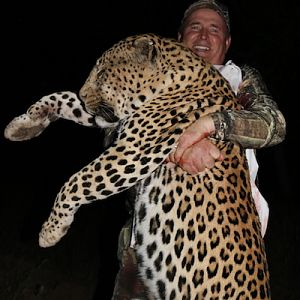 Namibia Hunting Leopard