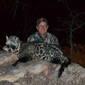 African Civet Cat Hunting in South Africa