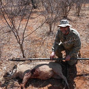 Spear Hunting Warthog South Africa
