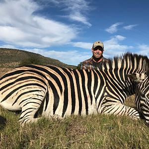 South Africa Hunting Burchell's Plain Zebra