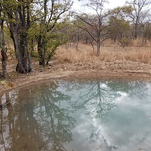 Waterhole at camp