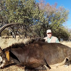 South Africa Hunting Sable