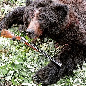 Bear Hunting with Merkel .375 H&H 140AE Double Rifle