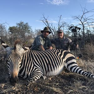 Namibia Bow Hunt Hartmann's Mountain Zebra