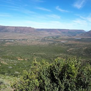 Hunting Area in South Africa