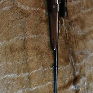 Holland & Holland 375 Magnum Rifle