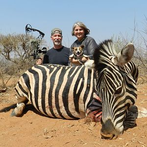 Bow Hunt Burchell's Plain Zebra in South Africa