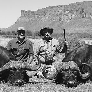 Hunt Buffalo in South Africa