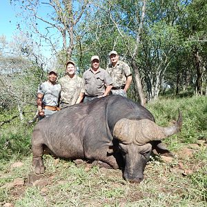Hunting Cape Buffalo in South Africa