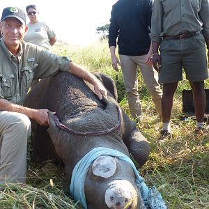 Volunteering on wildlife reserves and with wildlife veterinarians in Africa