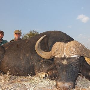 South Africa Hunting Cape Buffalo