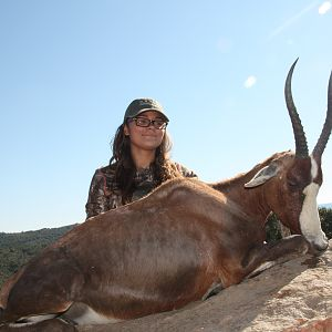 South Africa Hunt Blesbok