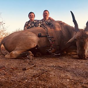 Eland Bow Hunting South Africa