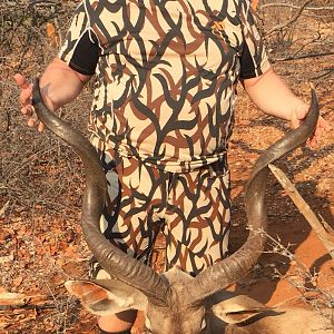 Kudu Bow Hunt South Africa