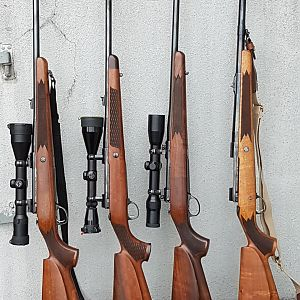 6.5×55 Swedish, .30-06,  9.3×62,  404 Jeffery Sako Rifles