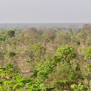 Hunting Area in Burkina Faso