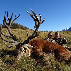 New Zealand Hunt Red Stag