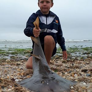 Fishing Sand Shark in Namibia