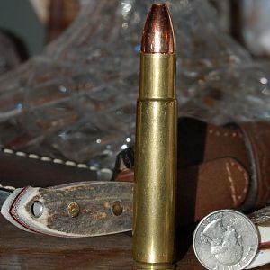 .505 Gibbs cartridge
