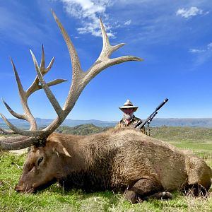 "448"" Inch Elk Hunting New Zealand"