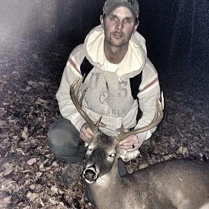 Whitetail buck WV