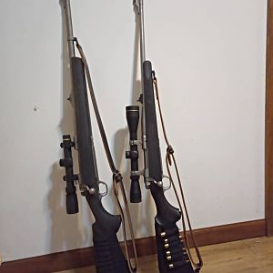 Two pairs of 450/400 Nitro Express with 30-06