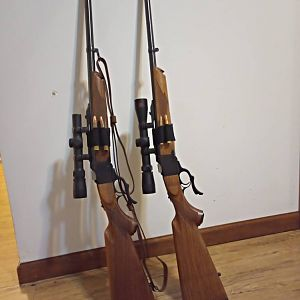 Two pairs of 375 Ruger with 300RCM