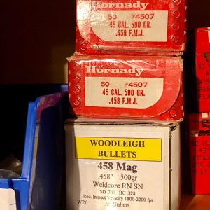 Hornady 500 grain solids & Woodleigh 500 grain soft points