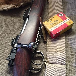 Mauser Rifle with Kynoch rounds 245 grains RN
