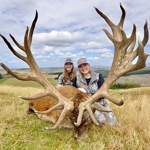 Hunt Red Stag in New Zealand