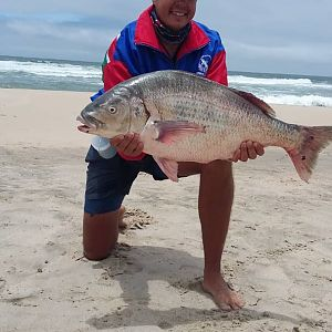 Fishing Steenbras in Namibia