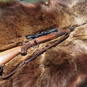 30-06 Hunting Rifle on a tanned hide of a Arctic Grizzly
