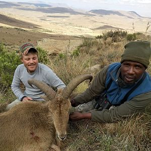 South Africa Hunting Aoudad