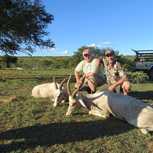 South Africa Hunt White Blesbok