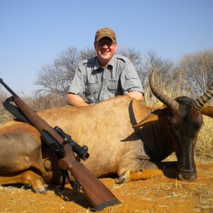 Tessebee hunted in South Africa
