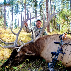 Wyoming Archery Elk