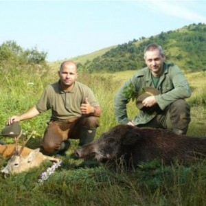 Hunting in Hungary Boar and Roe Deer