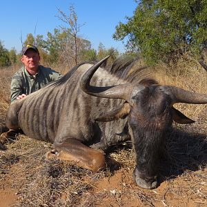 South Africa Hunt Blue WIldebeest
